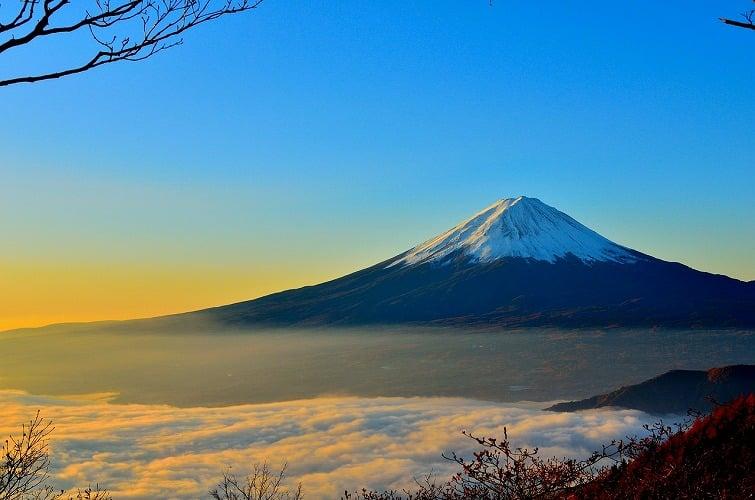 【今が旬】静岡県穴場デートスポット11選【地元イチオシ】