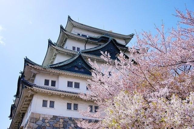 【今が旬】愛知県穴場デートスポット10選【地元イチオシ】