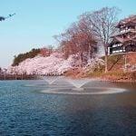 【今が旬】新潟県穴場デートスポット12選【地元イチオシ】