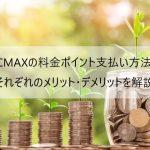 PCMAXのポイントはitunesカードで可能?色々な支払い方法とメリット・デメリットを解説
