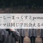 ピイシイマックス、ぴーしーまっくふは、パソコン関係ではなく出会い系PCMAXです