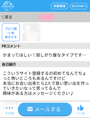 ハッピーメール初心者